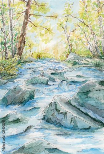 Fototapeta Stony river flow between trees obraz