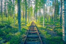 Marine Railway In The Middle Of A Forest. Kuhmo, Finland.