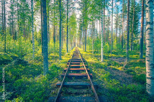 Cadres-photo bureau Route dans la forêt Marine railway in the middle of a forest. Kuhmo, Finland.