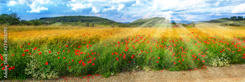 Photo Rural summer landscape with sunbeams