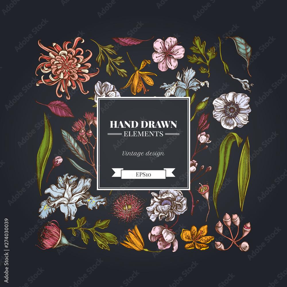 Fototapeta Square floral design on dark background with japanese chrysanthemum, blackberry lily, eucalyptus flower, anemone, iris japonica, sakura