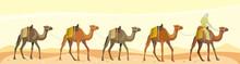 Caravan Camels With Bedouin In The Desert