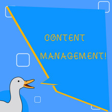 Word Writing Text Content Management. Business Concept For Processes Supports Collection And Publishing Information Photo Of Duck Speaking With Uneven Shape Blank Blue Speech Balloon.