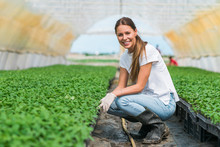 Portrait Of A Smiling Female Greenhouse Nursery Worker.