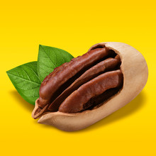 Pecan Nuts On Pastel Yellow An...