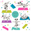 Yoga dogs poses and exercises. Dalmatian clipart