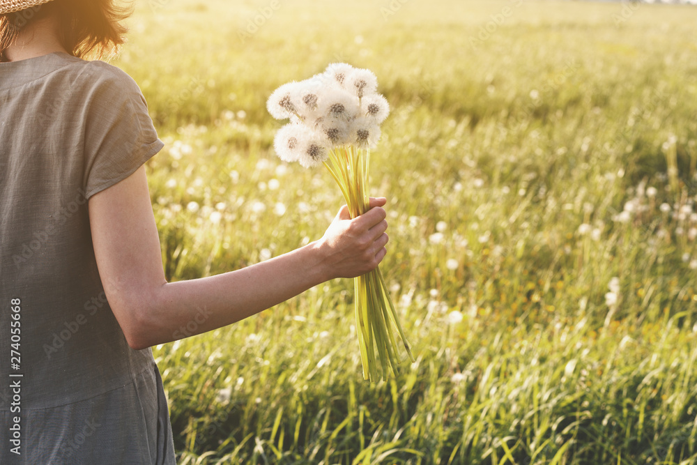 Fototapety, obrazy: young woman wearing linen dress holding bouquet of beautiful fresh dandelion flowers