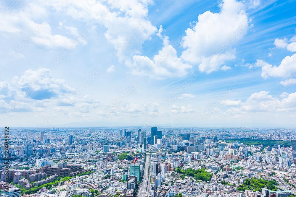Fototapeta 東京風景 Tokyo city skyline , Japan.