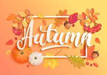 Gold Autumn Banner. Invitation...