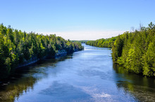 River Through Forest In Summer Under Blue Sky.