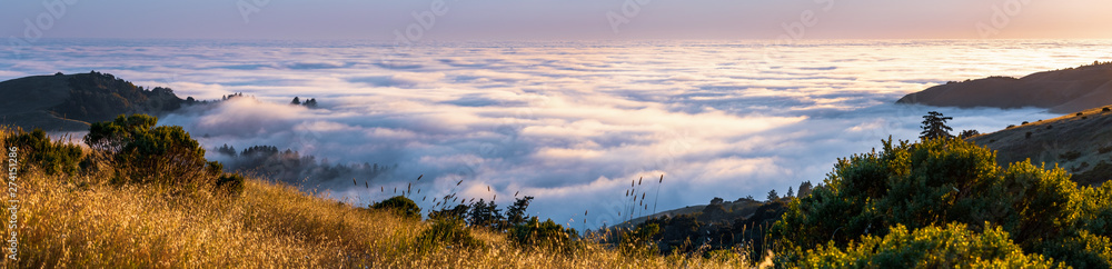 Fototapety, obrazy: Panoramic view at sunset of valley covered in a sea of clouds in the Santa Cruz mountains, San Francisco bay area, California