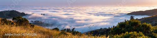 Panoramic view at sunset of valley covered in a sea of clouds in the Santa Cruz mountains, San Francisco bay area, California - 274151286