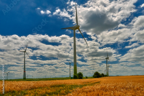 Poster Individuel Cultivated fields with matured cereals, and on them windmills producing green energy - Germany, Maklemburg