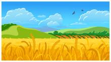 Summer Field Vector Illustration