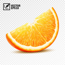 3d Realistic Vector Slice Of H...
