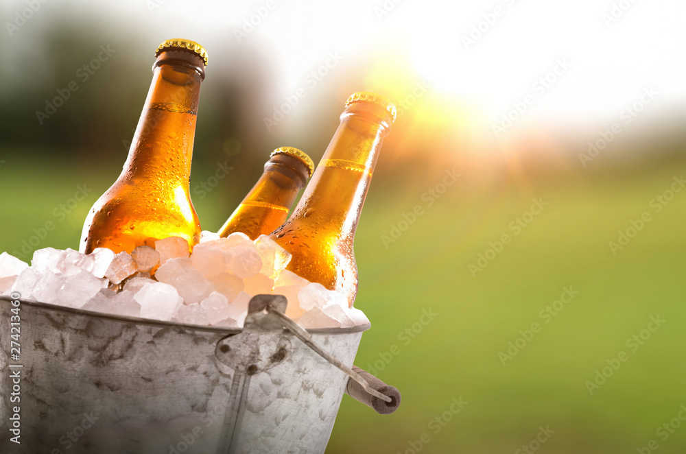 Fototapety, obrazy: Three beer bottles in bucket full of ice cubes field