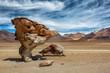 Felsformation in der Siloli Steinwüste