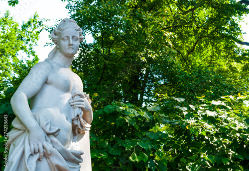 Fotomural Summer garden, Saint Petersburg, Russia