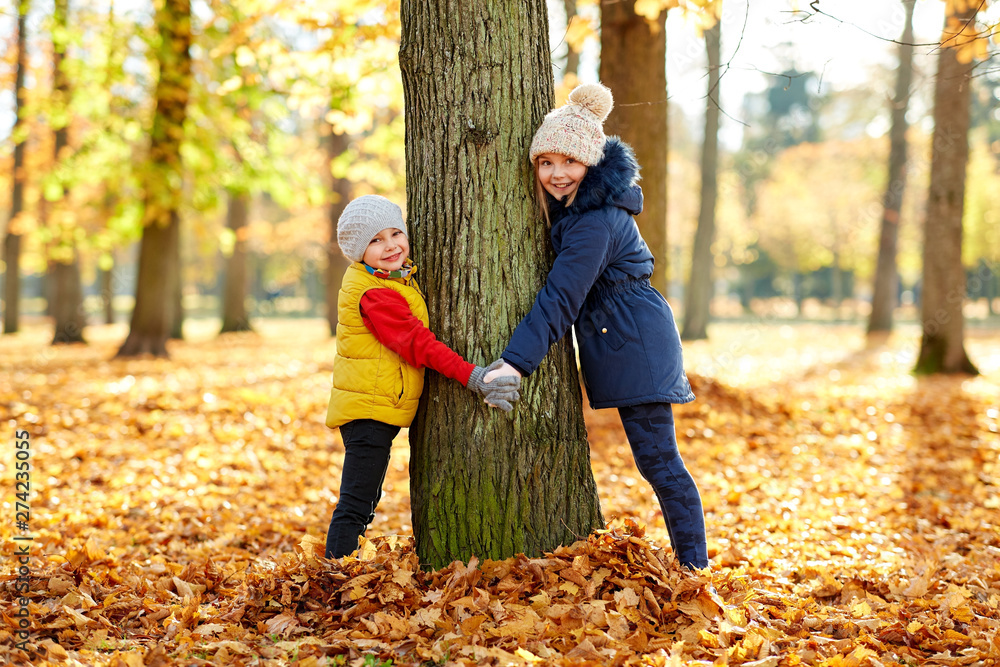 Fototapety, obrazy: childhood, season and family concept - happy children at tree trunk in autumn park