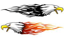 Bald Eagle Abstract Flame Vari...