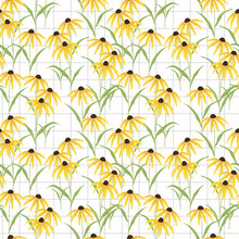 Black Eyed Susan Flower Seamless Pattern Vector.
