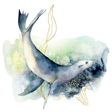 Watercolor Sea Lion And Seawee...