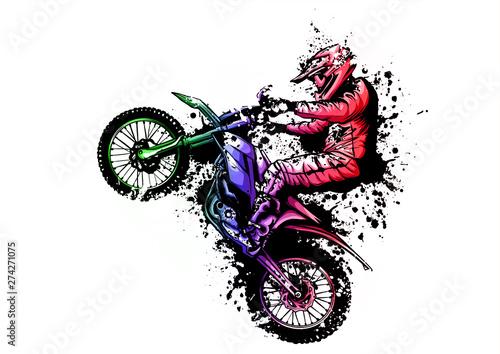 Fotografie, Obraz motocross rider ride the motocross bike vector illustration