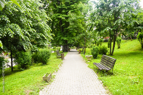Foto auf AluDibond Lime grun Concrete pavement pathway in the green city park with green trees and empty benches. Garden in urban city in the morning scene in summer season of Romania that is a nature landscape for relaxing