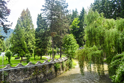 Photo Mountain fast river crossing the city park with green pines and willow trees in a summer spring day