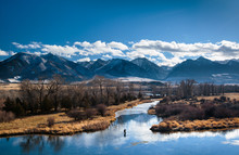 A Man Fly Fishes In A Spring C...