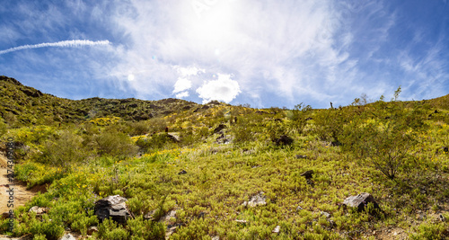 Fotografie, Obraz Looking up a green hillside at a deep blue sky with bright white clouds suitable for copy space