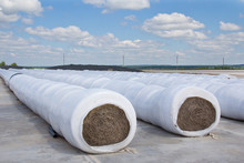 Stacks Of Hay Packed In Film For Storage. Agricultural Harvesting For The Winter.