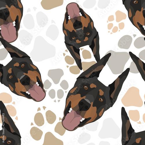Carta da parati Muster Hundepfoten Dobermann