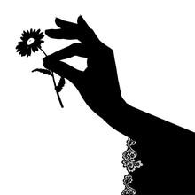 Black Silhouette Of Female Han...