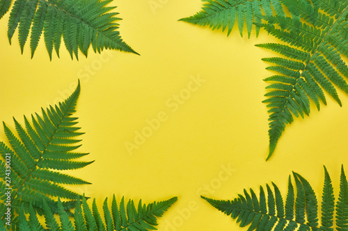 Poster Palmier Border of fern leaves on yellow. Top view with copy space. midsummer background