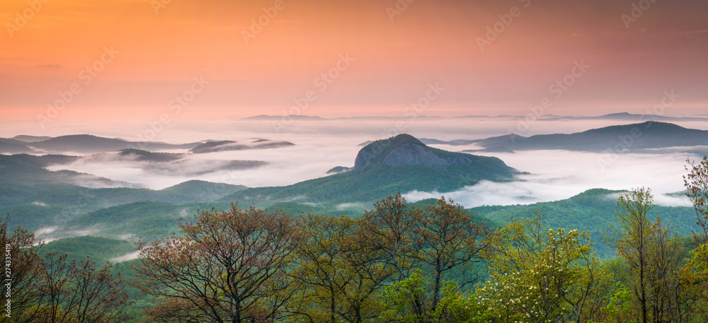 Fototapety, obrazy: Gorgeous panoramic photo of Looking Glass Rock in Pisgah National Forest surrounding by early morning fog.