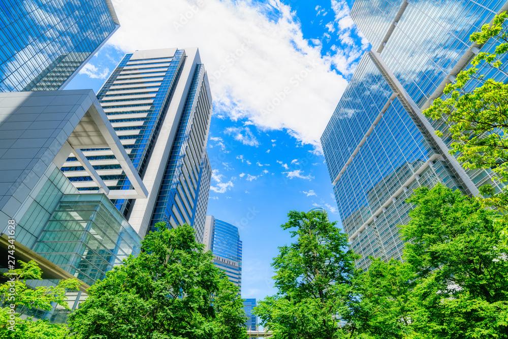 Fototapety, obrazy: 爽やかな緑のビジネス街