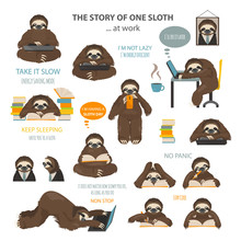 The Story Of One Sloth. At Wor...