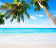 Scenic seascape with coconut palm trees and oceans turquoise water. Idyllic tropical beach scene.