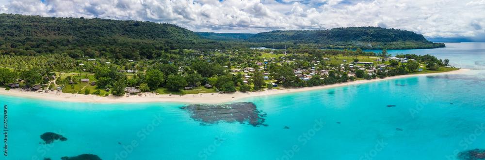 Fototapety, obrazy: Port Orly sandy beach with palm trees, Espiritu Santo Island, Vanuatu.