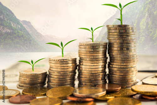 Fotografía  step of golden coins stacks on table with tree growing on top, nature background