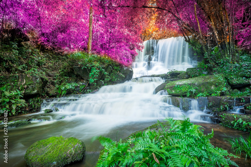Printed kitchen splashbacks Forest river Amazing in nature, beautiful waterfall at colorful autumn forest in fall season