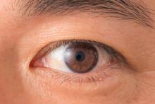 日本人青年の目 Eyes O...