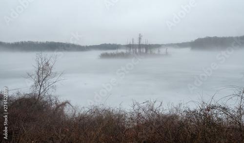 Obraz na plátně  morning on the lake