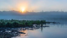 Sunrise Over A Wetland