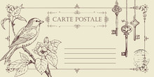 Vector Greeting Card Or Retro Postcard With Little Hand-drawn Bird On Branch Of Flowering Tree. Romantic Vector Card In Vintage Style With Place For Text And Postmark In Frame With Curls