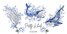 Collection Of Watercolor Hand Draw Whale And Flowers, Isolated On White Background