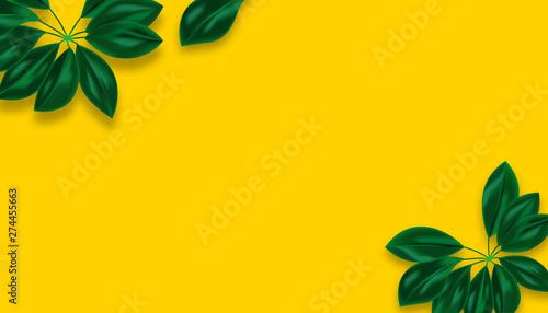 tropical leaf Background - illustration