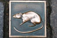 Paving Stone With Bronze Rat  ...