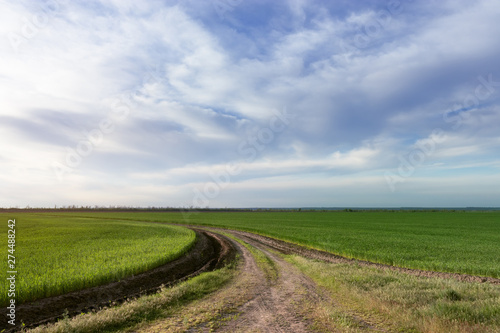 Wall Murals Blue earthen road around green field / agriculture countryside